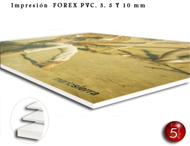 IMPRESION_forex_pcv